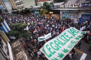 Maconha: Veja as razões para liberar o uso e por que Uruguai,Portugal e EUA já adotam a liberação